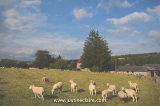 Farbridge Barn Wedding Photographers reportage-149